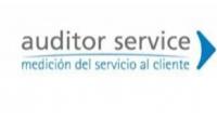 84_logo_auditor_service1330126615.jpg